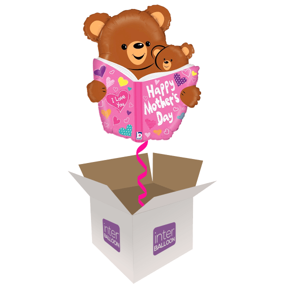 28″ Mothers Day Bear Book